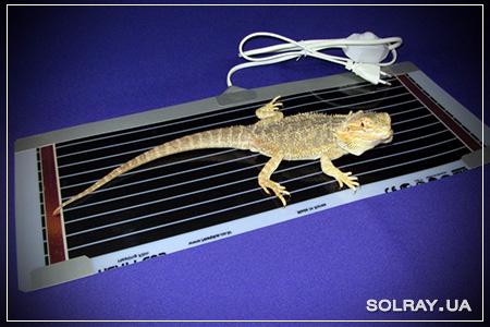 Термоковрик для террариума с терморегулятором купить